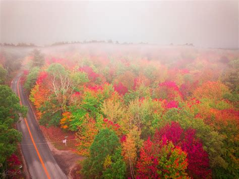 fall colors 2017 fall foliage 2017 portland press herald