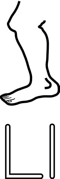 l is for leg clip art at clker com vector clip art
