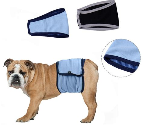 puppy incontinence get cheap pet incontinence aliexpress
