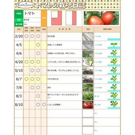 トマトの栽培日誌 月9ドラマ リッチマン プアウーマン 放送 無料テンプレート公開中 microsoft