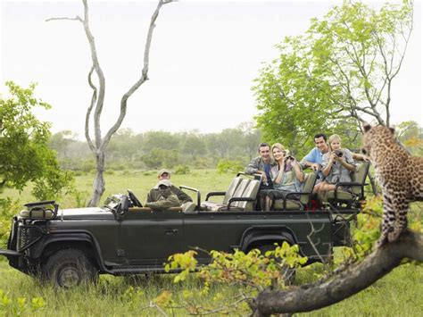 nedlasting filmer wonder park gratis african safari for first timers zicasso