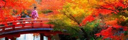 japan tours wendy wu tours