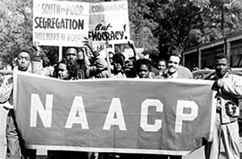 the voting rights war the naacp and the ongoing struggle for justice books brown v board of education american experience