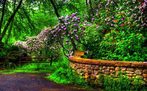 descargar imagenes de jardines gratis banco de im 193 genes 30 fotos bonitas de paisajes animales