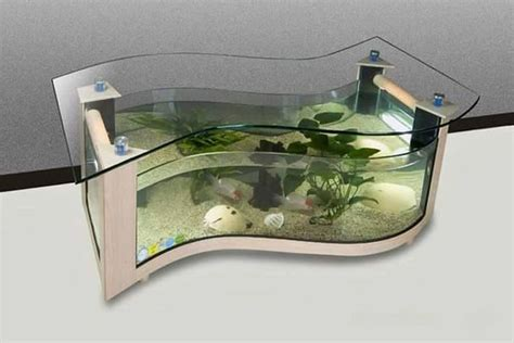 coffee table aquarium beautiful coffee table aquariums quiet corner