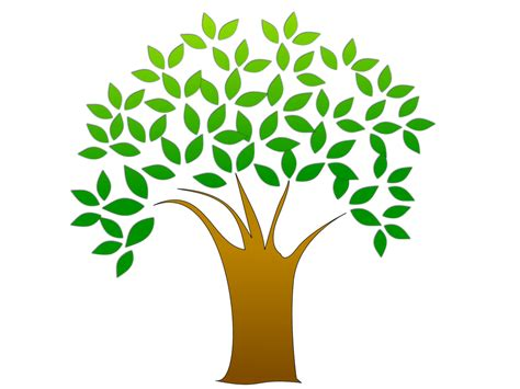 tree images free tree clipart free stock photo illustration of a tree