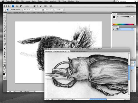 adobe illustrator free download full version cs4 adobe cs4 photoshop and illustrator keygen maker free