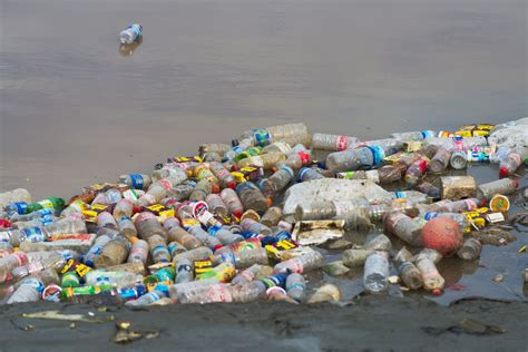 Islands Search Remote Pacific Island Covered In Plastic Trash Researchers Time