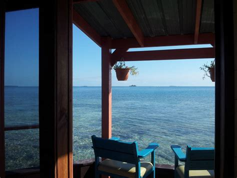 bird island belize rental bird island in belize