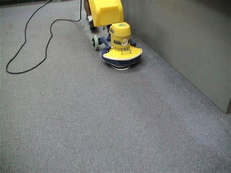 how to deep clean your carpet hirerush blog cimex carpet cleaning machine carpet ideas