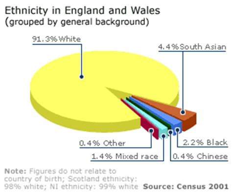 ethnic minorities in uk bbc news uk ethnic groups growing census