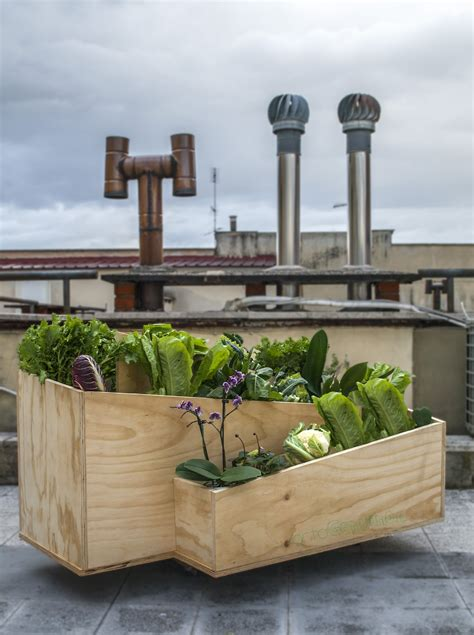 orto terrazza urbanorto vaso per orto in balcone terrazza e giardino