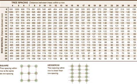 fruit tree spacing chart burchell nursery
