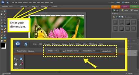 resize layout photoshop photoshop elements how to resize images linda matthews