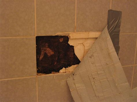 is mold in the bathroom dangerous pics for gt toxic black mold bathroom