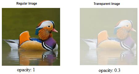css div opacity css image transparency opacity