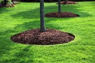 landscaping supply landscaping with mulch bjorklund companies