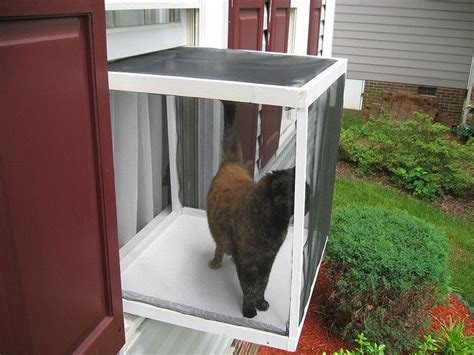 cat window box for the fur babies - Cat Window Box Enclosure