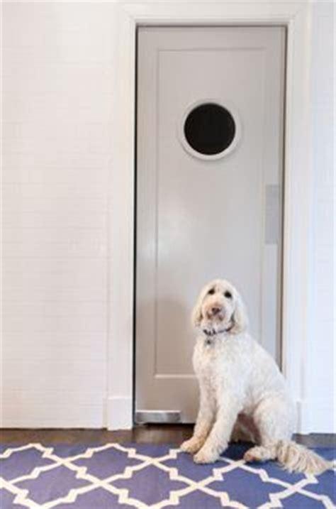swinging doors nashville porthole fantasy on pinterest swinging doors kitchen