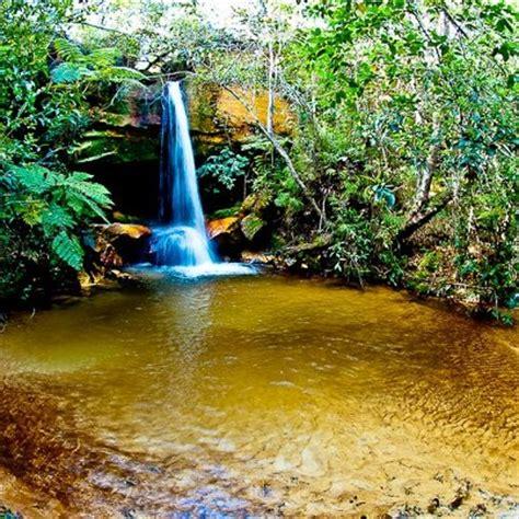 Imagenes Raras Da Natureza | zecablog o cerrado 233 uma joia rara da natureza a ser