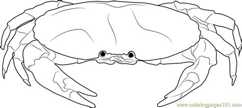 blue crab coloring page blue crab coloring page free crab coloring pages