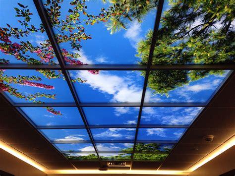 sky ceiling lighting design basement ceiling options
