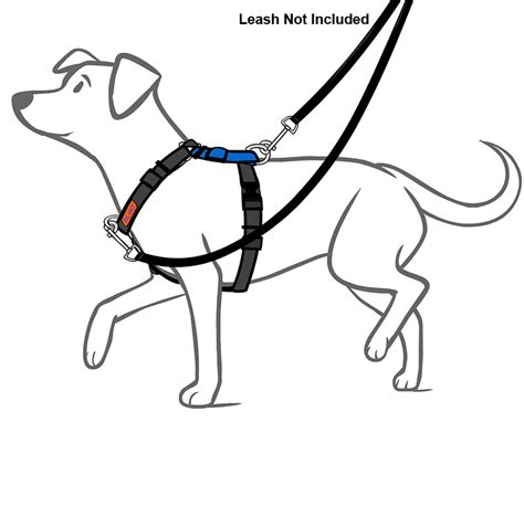 balance harness balance no pull harness six way adjustable non restrictive with neck buckle