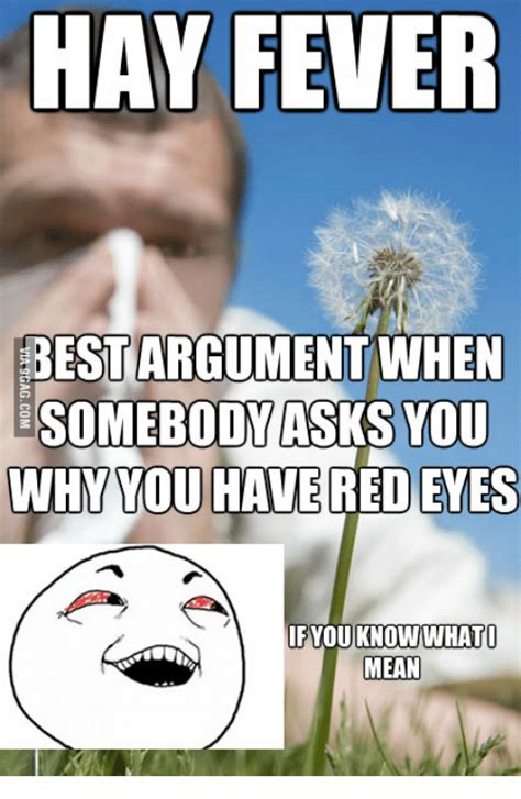 Hay Meme - 25 best memes about pictures of hay fever pictures of