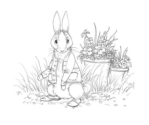 beatrix potter characters coloring pages coloring pages
