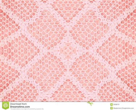pink pattern texture lace texture pattern in pink stock photo image 2638210
