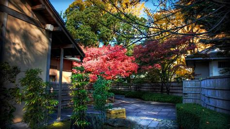 Home Design Pc Game Download momiji behind tea house japanese landscape wallpaper