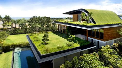 ten insights  designing eco friendly green homes home design lover