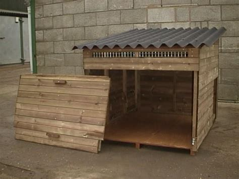how to build a duck house have some questions on duck coops backyard chickens