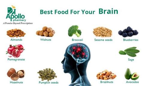diet for the mind the science on what to eat to prevent alzheimer s and cognitive decline books food for your brain healthy food how do you feed your