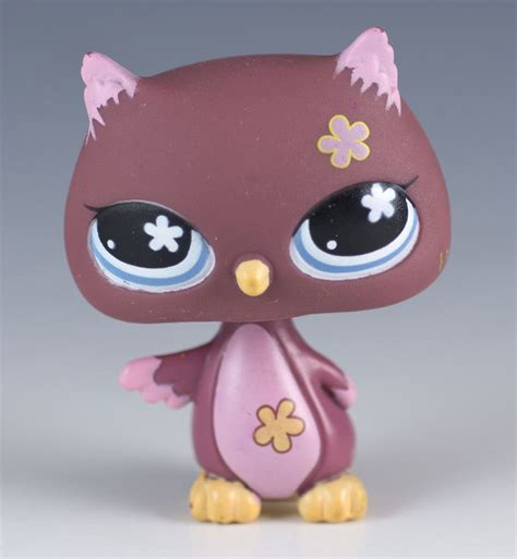 Shafa Khimar No Pet Maroon littlest pet shop owl 635 maroon and pink with blue ebay