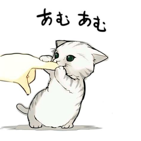 imagenes tan kawaii es tan tan kawaii cute kokoro aishiteru neko