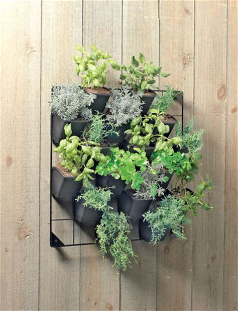 Outside Wall Planters by Vertical Wall Garden Outdoor Pots And