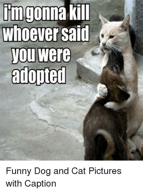 pictures with captions im gonna kill whoever said you were adopted and