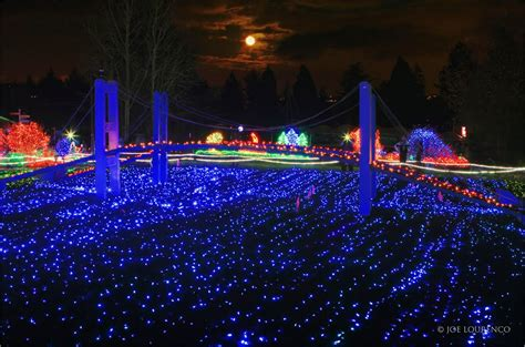 Panoramio Photo Of Point Defiance Light Show Zoo Lights Point Defiance