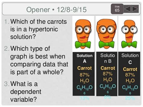 coding for carrots solutions biology agenda and targets 2015 sem 1