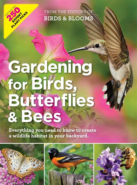 gardening for birds gardening for birds butterflies and bees book by