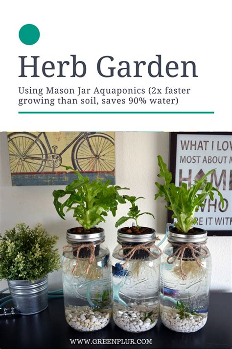 herb garden ashwiniahujaonline s weblog 3 mason jar aquaponics kit build your own hydroponics