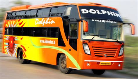 dolphin travel hosue travels  bus booking flat  discount  bus booking  abhibus
