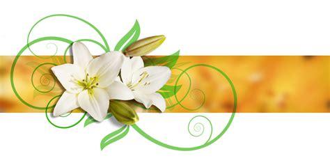 acquisto fiori acquisto fiori e piante on line in italia e nel mondo con