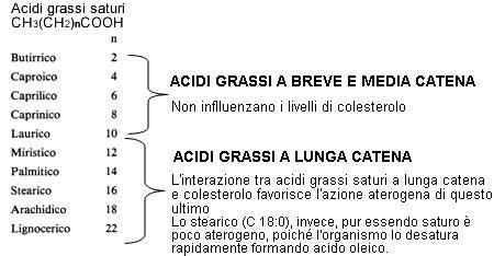 acidi grassi saturi e insaturi alimentazione grassi insaturi