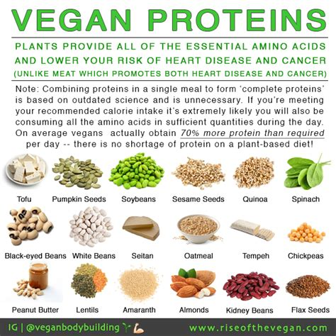 protein for vegans quot but where do you get your protein quot