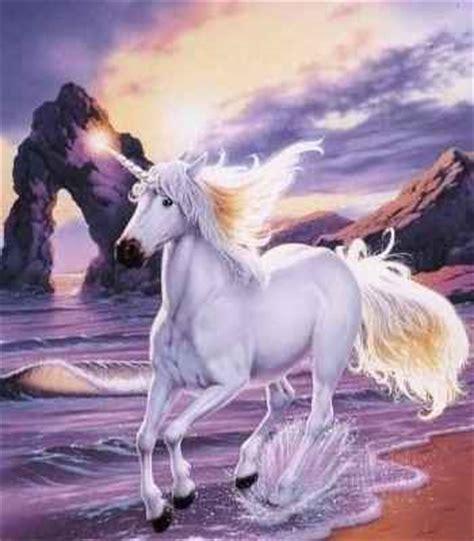 imagenes seres unicornio galeria de unicornios