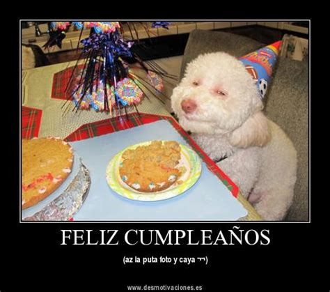 imagenes chistosas de cumpleaños para compartir en facebook im 225 genes humor 237 sticas para compartir en los cumplea 241 os