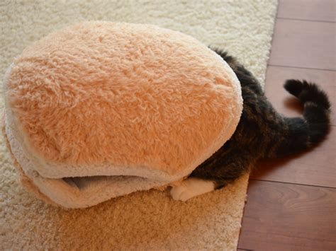 cat macaron bed so comfy an adorable macaron bed for your cat