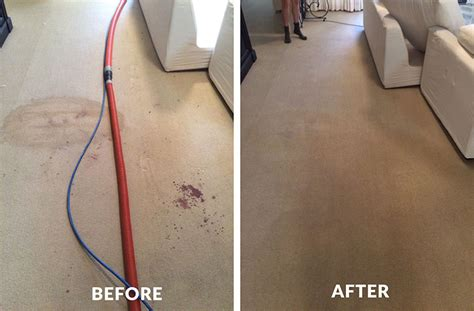 upholstery cleaning meaning stain removal carpet cleaning brisbane